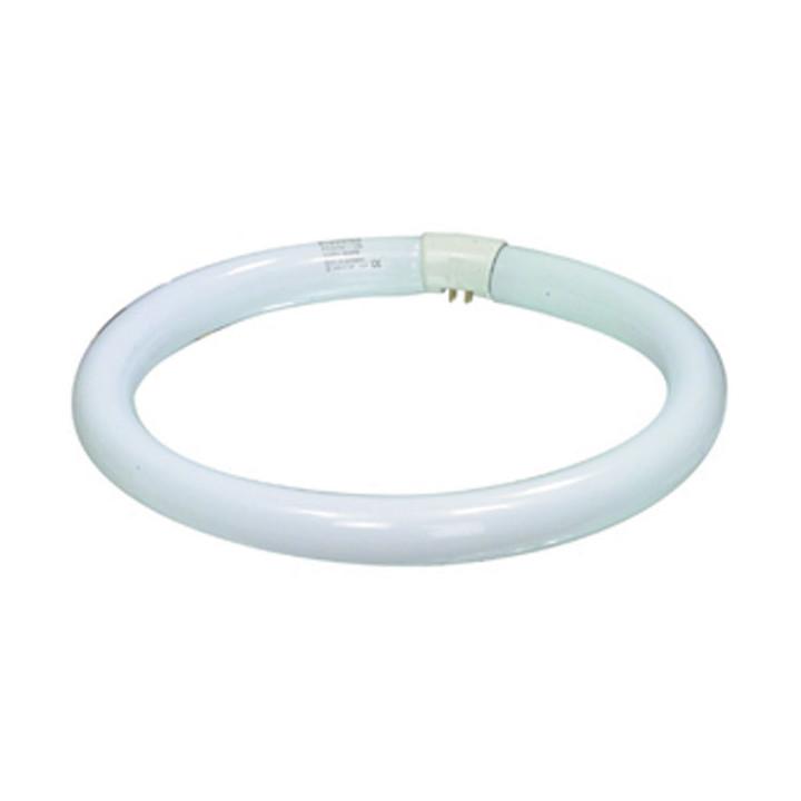 G10q circline fluorescent bulb 32w lamp light tl e 32w/33 circular tube syl 00484