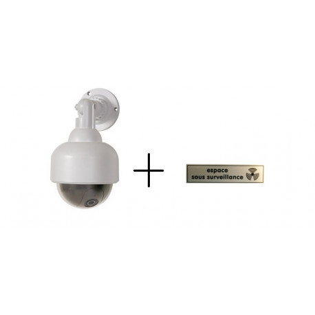 Fake Dummy CCTV Security Camera Flashing LED Indoor Outdoor Dome