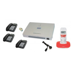 Pack telephonie central telephonique 3 lignes 12 postes telephones commerce magasin entreprise