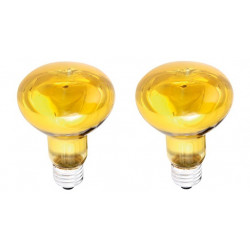2 X Coloured spot yellow 60w r80