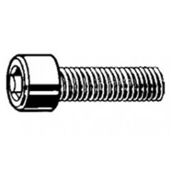 Set of 10 stainless steel screws 6 socket 3 x 30 mm