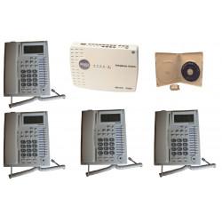 Pack Pabx central standard telephonique 3 lignes 12 postes téléphone