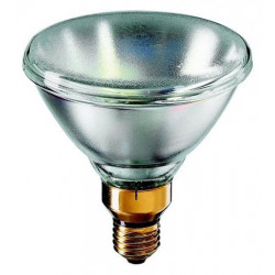 Bulb Lamp 24v 150w e27 220v 230v 240v mazdapar par38 intensive light