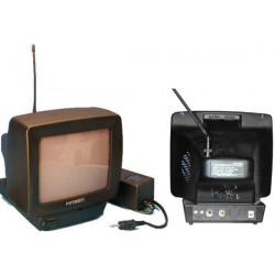 Moniteur surveillance video n/b sans fil 900mhz 2canaux poptron ptv223 pour camera csf ecran