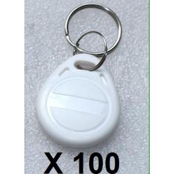 100 pcs tag cle badge clef em4305 em4100 em4102 RFID 125KHz enregistrable blanc