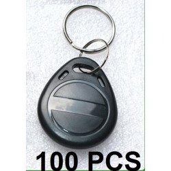 100 Tag noir 13.56mhz rfid ic iso14443A s50 clef porte cle etanche Anti-corrosion mifare nfc 1K