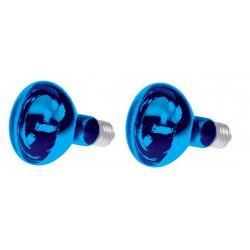 2 X Farbige discolampe blau 60w