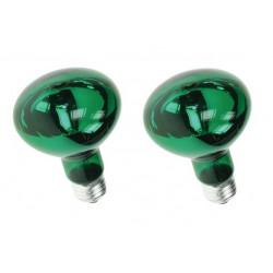 2 X Farbige discolampe grun 60w