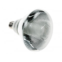 Par38 energy saving lamp 23w 240v e27 2700k